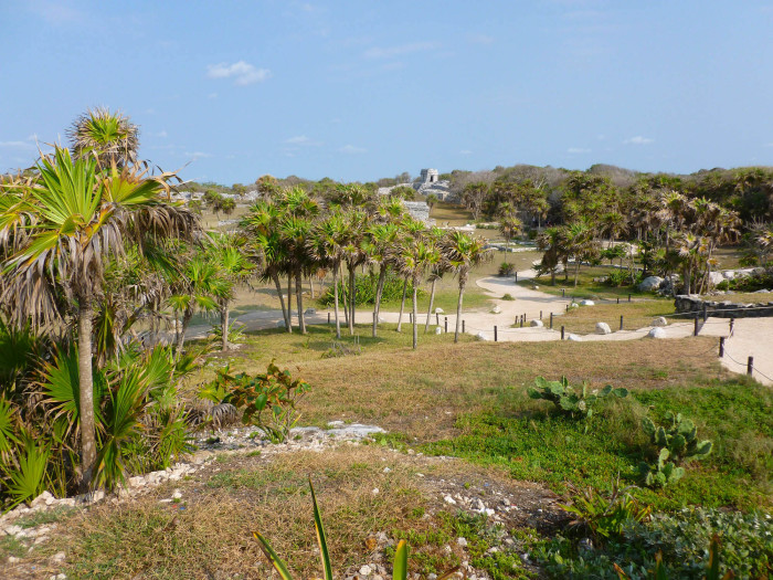 An overview of much of the site at Tulum