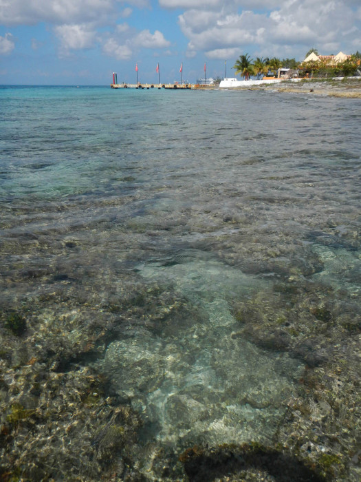 Cozumel's beautifully clear water