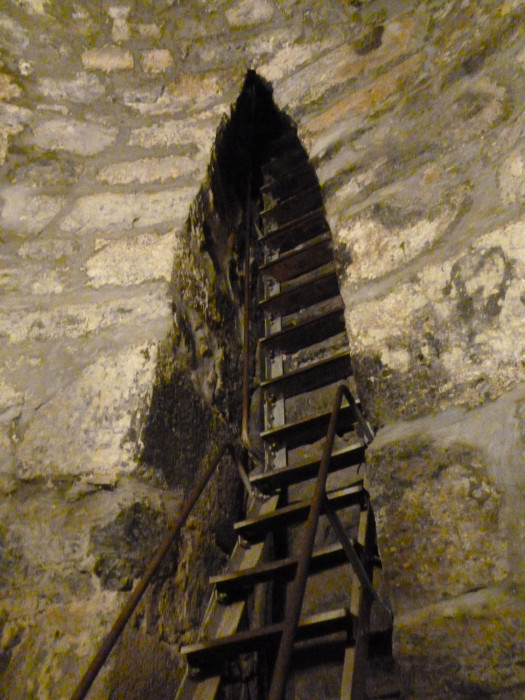 The ladder leading up out of the put where St. Gregory was held for 12 years