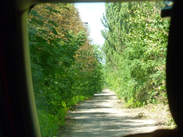 The nearly overgrown road to Pripyat