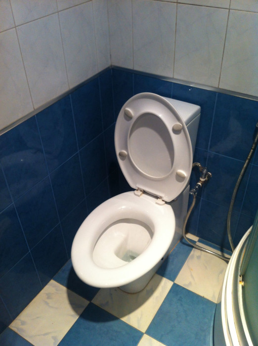Ok, so even when the seat on this toilet was up, the rim of the bowl was wide enough to sit it. I'd never seen anything like it.