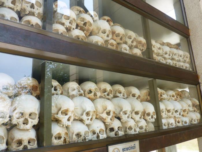 Still more skulls