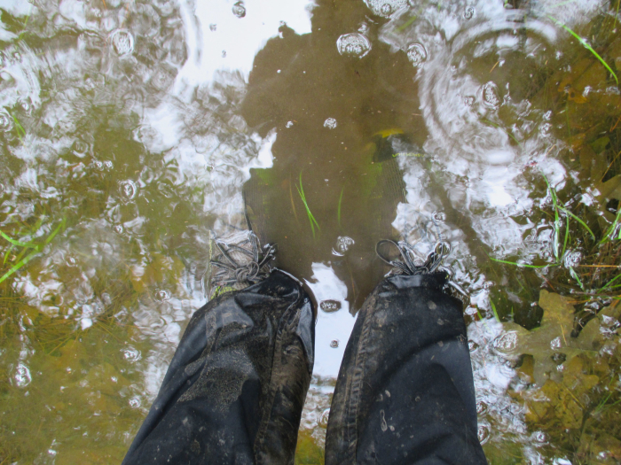 The trail was very, very wet in places.