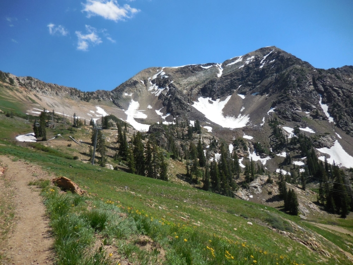Looking up at Twin Peaks after dropping down toward Snowbird. The skyline ridge is the one I climbed up to the summit.