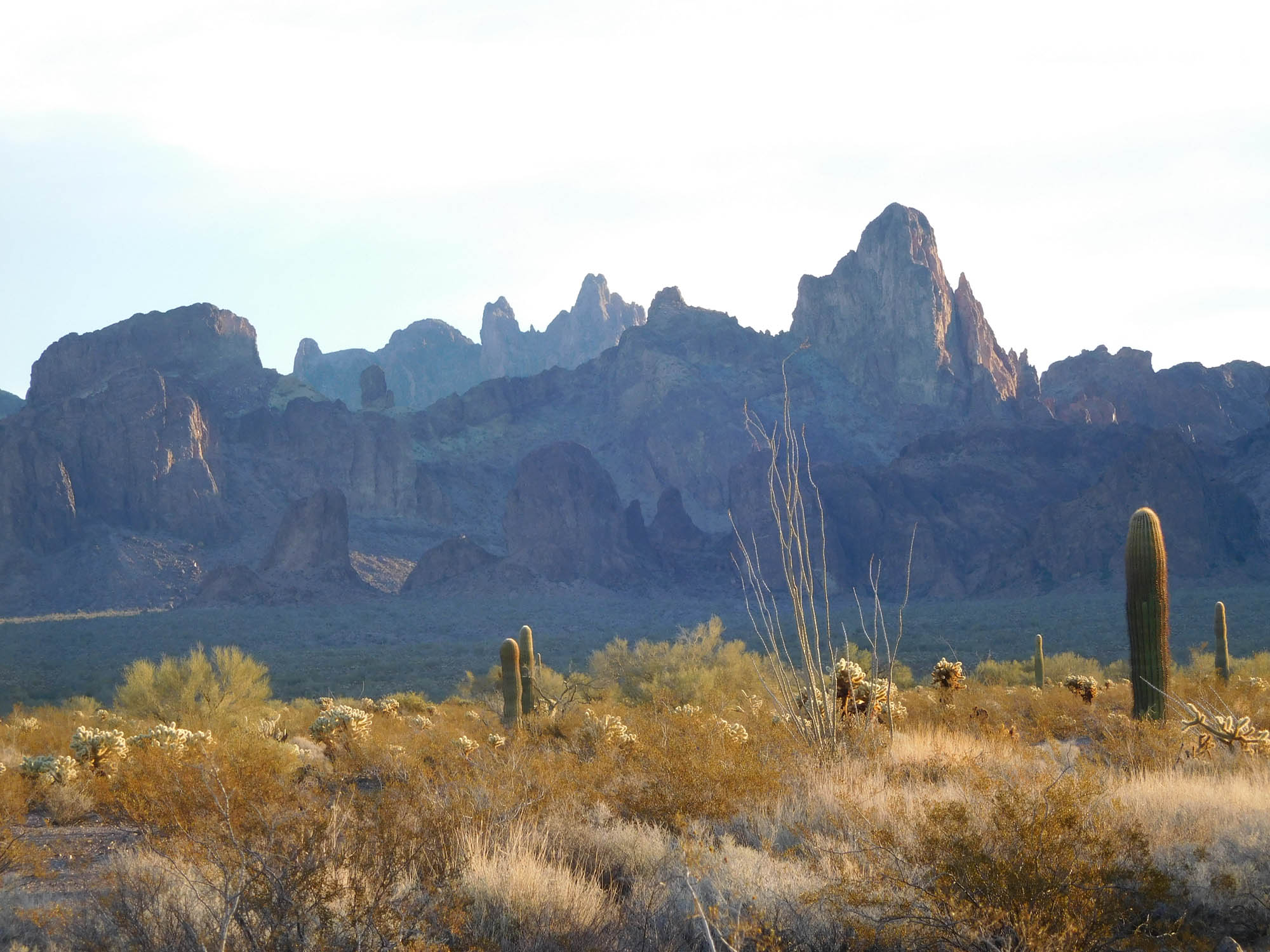 Looking back at the Kofa Mountains the next morning. What an awesome place.