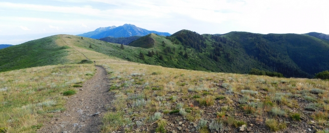 """On the """"plateau"""" up at the top. Eyrie Peak (the highpoint of the mountain) is just right of center. Lewis Peak is the rounded knob on the far right. That's where I camped."""