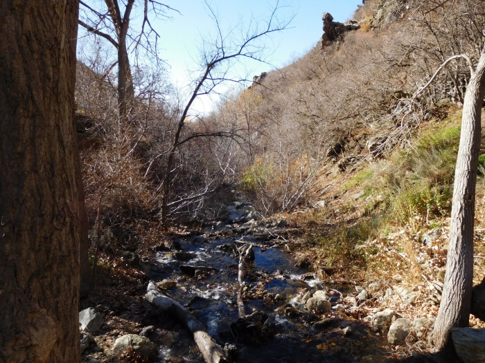 In Bair Canyon